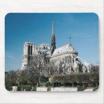Catedral de Notre Dame Tapetes De Raton