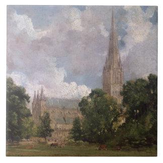 Catedral de Salisbury del oeste del sur Azulejo Cuadrado Grande