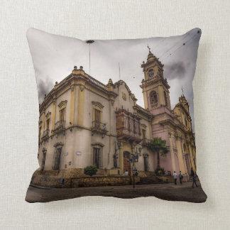 Catedral De Salta Cojín