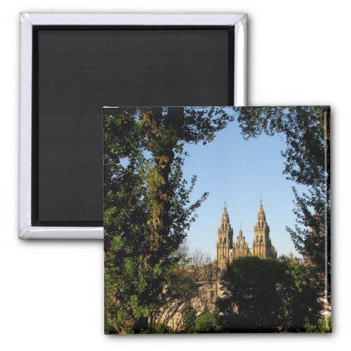 Catedral de Santiago del imán del parque