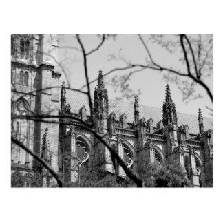 Catedral en primavera postal