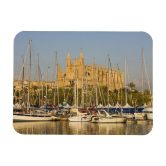 Catedral y puerto deportivo, Palma, Mallorca, Espa Imán