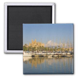 Catedral y puerto deportivo, Palma, Mallorca, Espa Imán Cuadrado