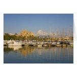 Catedral y puerto deportivo, Palma, Mallorca, Espa Tarjeta De Felicitación