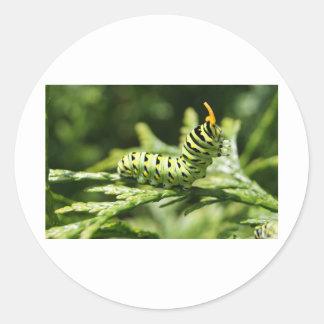 Caterpillar 2012 etiquetas redondas