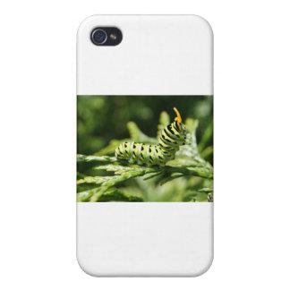 Caterpillar 2012 iPhone 4 cobertura
