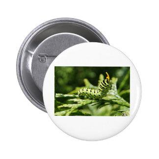 Caterpillar 2012 pins