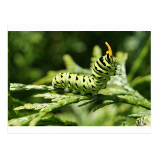 Caterpillar 2012 postal