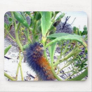 Caterpillar at the Beach Mouse Pad