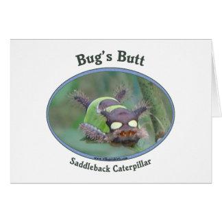 Caterpillar Bug's Butt Card