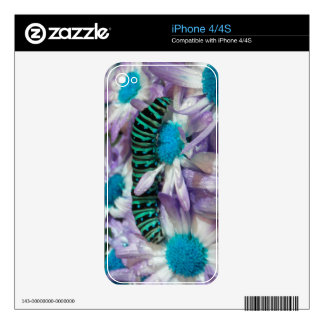 Caterpillar Fantasy Purple N Turquoise iPhone 4 Skins For iPhone 4S
