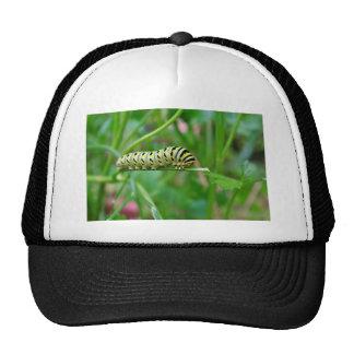 Caterpillar Trucker Hat