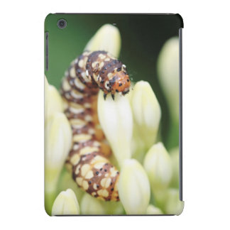 Caterpillar Larvae Of Lily Borer Butterfly iPad Mini Case