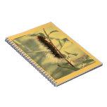 Caterpillar melenudo cuaderno