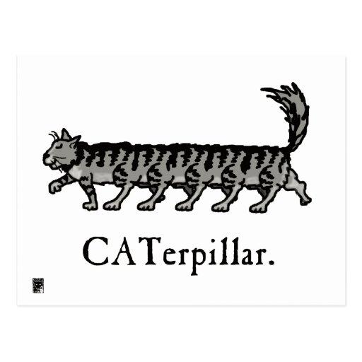 Caterpillar Postal