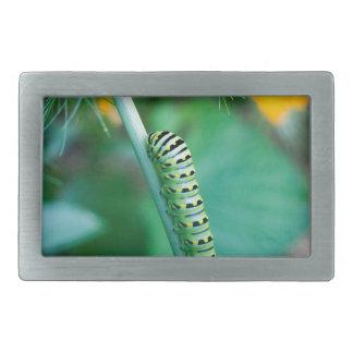 Caterpillar Rectangular Belt Buckle