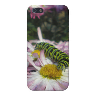 Caterpillar Stroll Case For iPhone SE/5/5s
