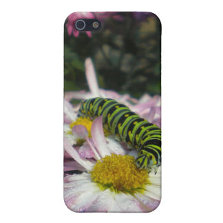 Caterpillar Stroll Cover For iPhone SE/5/5s