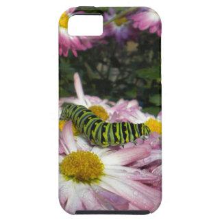 Caterpillar Stroll iPhone 5 case