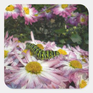 Caterpillar Stroll Sticker