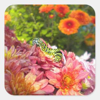 Caterpillar Sunning Stickers