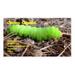 Caterpillar verde tarjetas personales