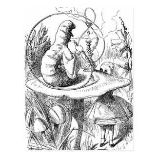 Caterpillar with Hookah and Alice Postcard