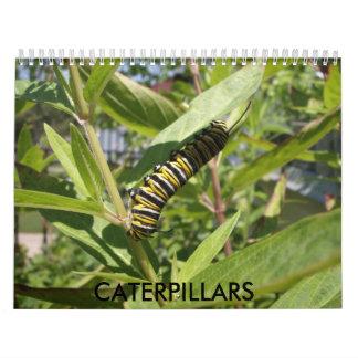 Caterpillars Calendar