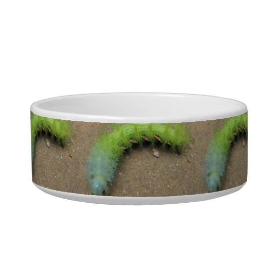 Caterpillars Cat Bowl