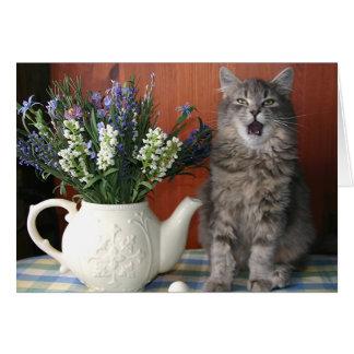 'Caterwaul', Singing Cat Notecard