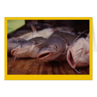 """Catfish"" Greeting Card"