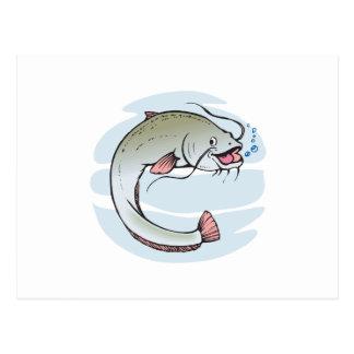Catfish Postcard