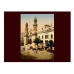Cathedral Algiers Algeria Post Cards