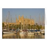 Cathedral and marina, Palma, Mallorca, Spain 2 Card