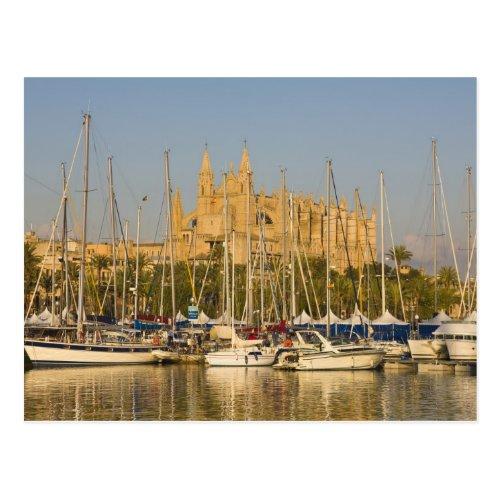 Cathedral and marina Palma Mallorca Spain 2 Postcard