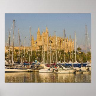 Cathedral and marina, Palma, Mallorca, Spain 2 Poster