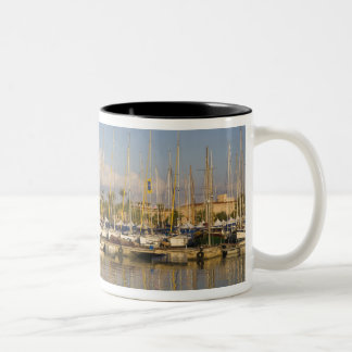 Cathedral and marina, Palma, Mallorca, Spain Two-Tone Coffee Mug