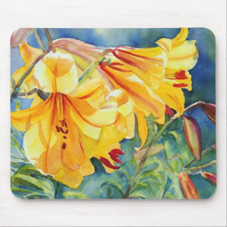 Cathedral Gold 15x11 Mouse Pad