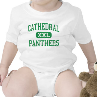 Cathedral - Panthers - High - Boston Massachusetts Baby Bodysuits