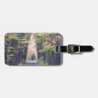 Cathedral Road Luggage Tag