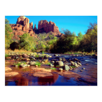 Cathedral Rock reflecting in Oak Creek Postcard