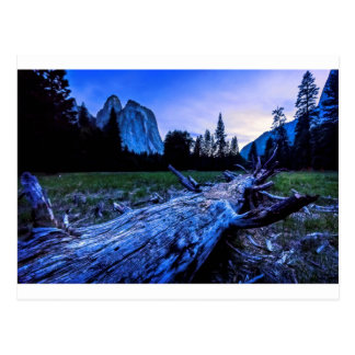 Cathedral Rocks from El Capitan Meadows Postcard