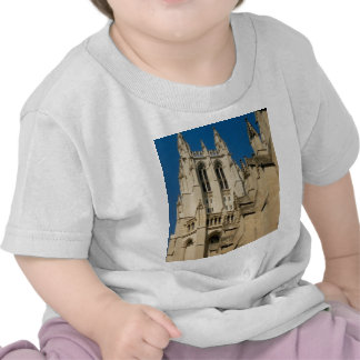 Cathedral Tee Shirt