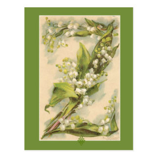 Catherine Klein Flower Alphabet Z Lily of Valley Postcard