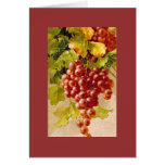 Catherine Klein grapes.  NOTE CARD BRK