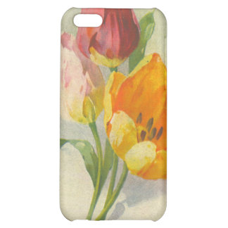 Catherine Klein Reproduction Postcard IPhone Case iPhone 5C Covers