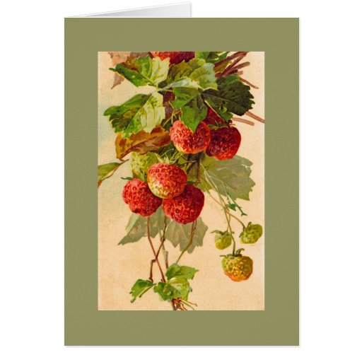 Catherine Klein strawberries NOTE CARD DKGR