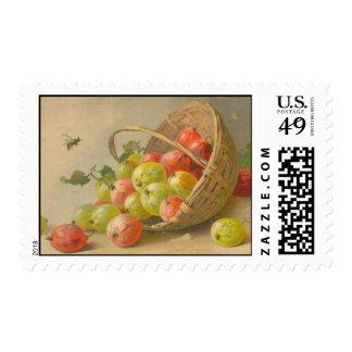 Catherine Klein Vintage Postcard Reproduction Postage
