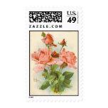 Catherine Klein Vintage Postcard ReproductionStamp Stamp
