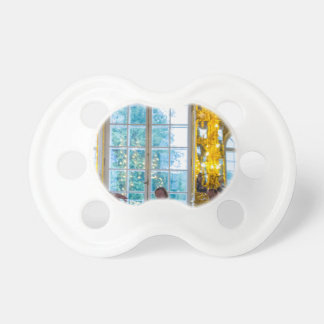 Catherine's Great Palace Tsarskoye Selo Ball Room Pacifier